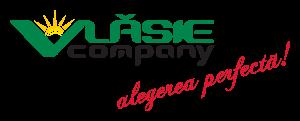 logo VLASIE Company